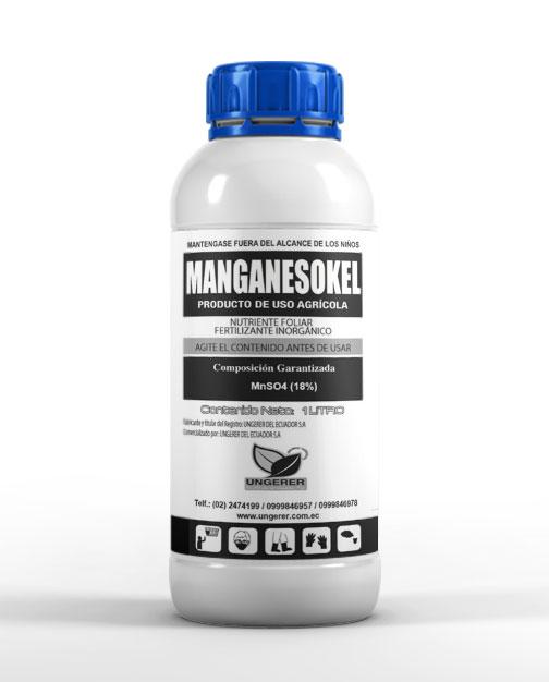 magnesokel